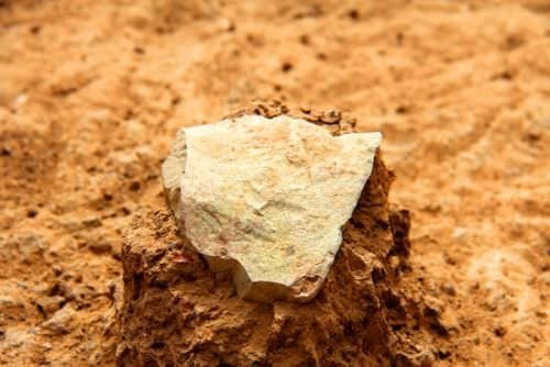 Kenya'da 3.3 milyon yıllık aletler bulundu!