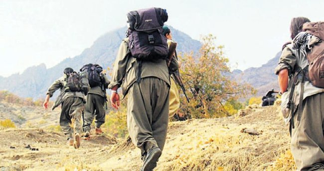 Terör örgütü PKK'ya iki ayda ağır darbe