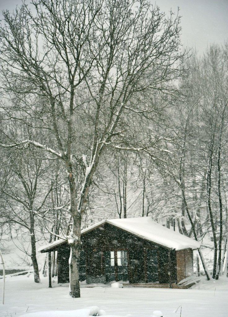 Yurttan kar yağışı manzaraları
