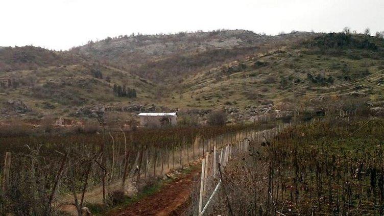 PKK'nın bomba imalathanesine baskın