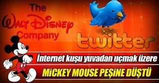 Mickey Mouse internet kuşunun peşinde