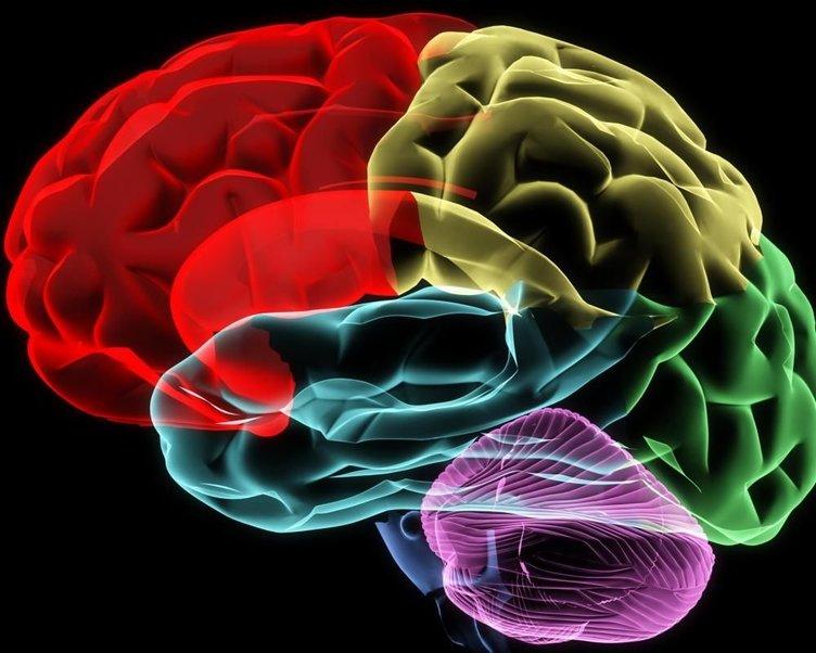 Parkinson hastalığının nedenini biliyor musunuz?