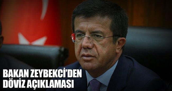 Bakan Zeybekçi'den döviz açıklaması