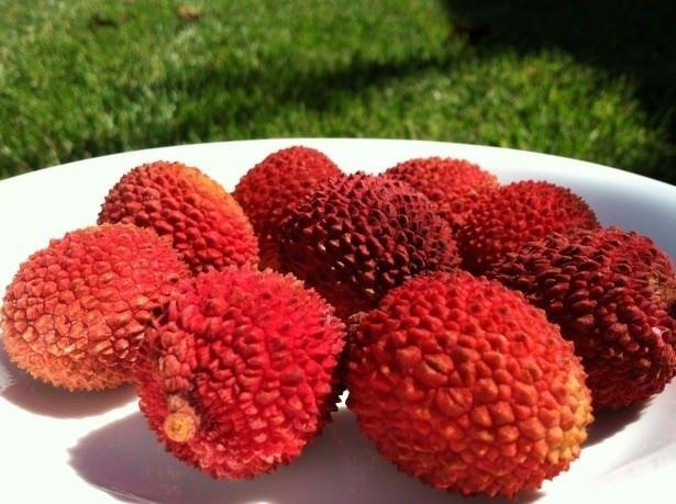 Kilo vermeyi sağlayan süper meyve Liçi