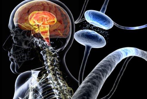 Bu hastalık beyin hücrelerini…