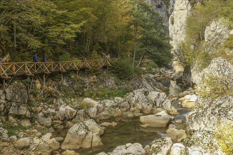 Küre Dağları Milli Parkında sonbahar