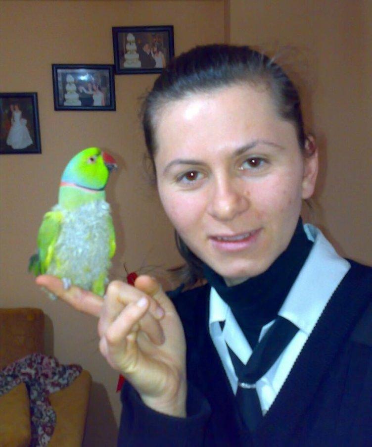 Eve giren hırsız papağan çaldı