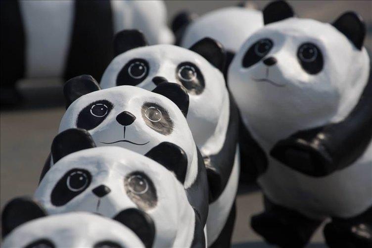 Paulo Grangeon'un 1600 panda heykeli