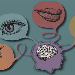 Duyu organlarımızın görevi nelerdir