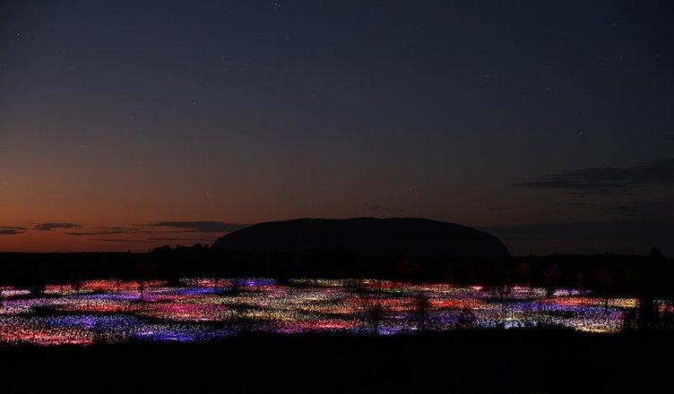 Çölü aydınlatan sanatçı ışık tarlası oluşturdu