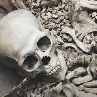 Hindistan'da insan kemiği kaçakçıları yakalandı