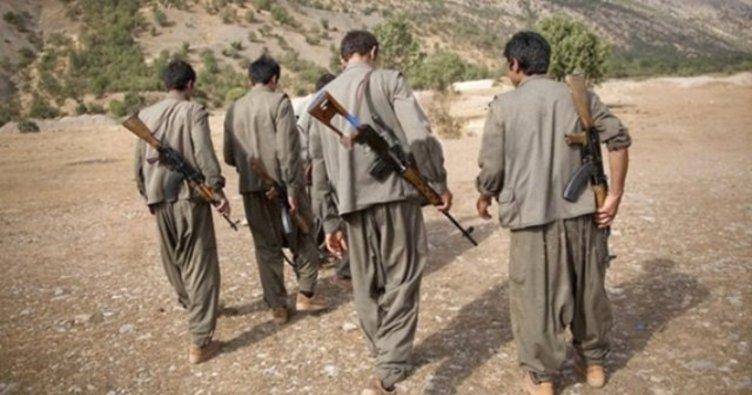 Kato Dağı'nda 4 terörist öldürüldü