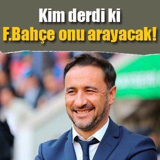 Fenerbahçe Pereira'yı mumla arıyor