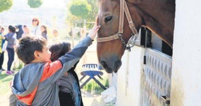 Minikler öğretmenleriyle at çiftliğini ziyaret etti