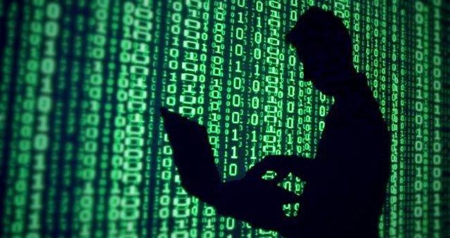 Türk Hackerlar, Hollanda partisini hedef aldı