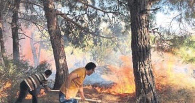 Orman yangınında alevlere koştular