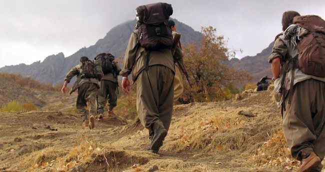 PKK'dan kaçan 2 terörist, sınırda teslim oldu