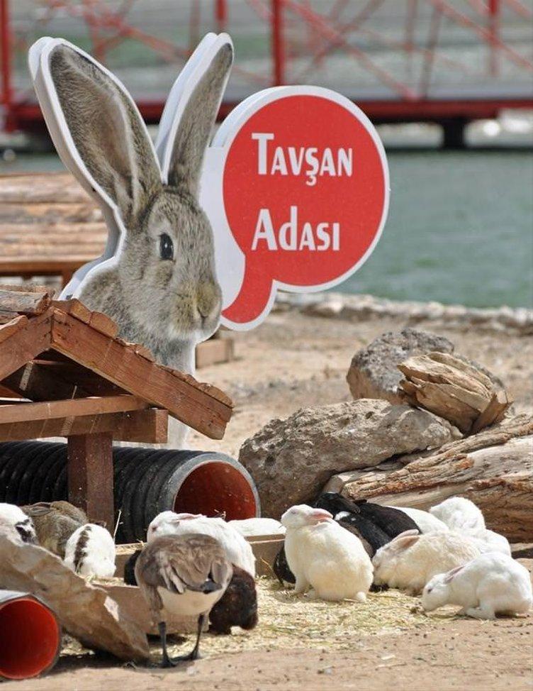 Anadolu Harikalar Diyarı