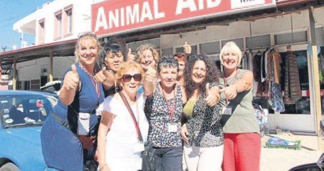 Animal Aid, 4'üncü yaşını kutluyor