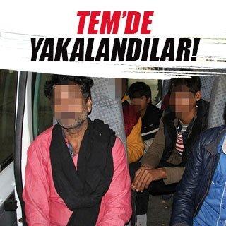 Yunanistan'ın geri gönderdiği kaçaklar TEM'de yakalandı