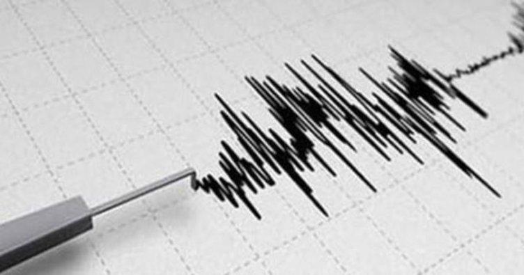Van Gevaş'da 4.5'lik deprem korkuttu
