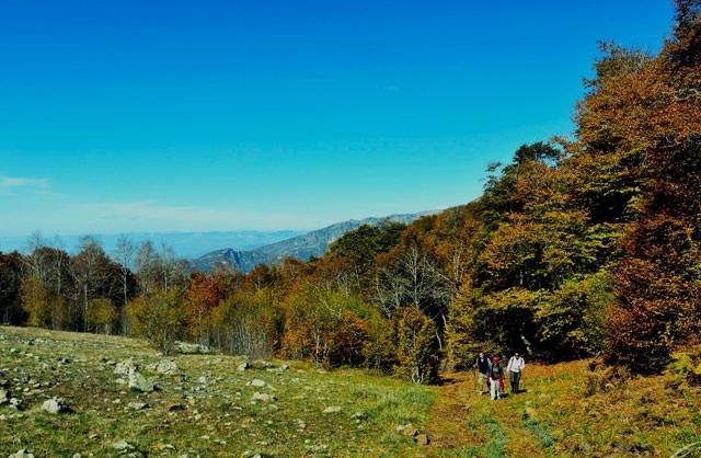 Dumanlı Yaylası sonbaharda büyülüyor