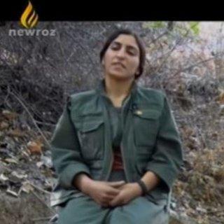 İsveç'ten quot Newroz TV quot çalışanının iltica talebine ret