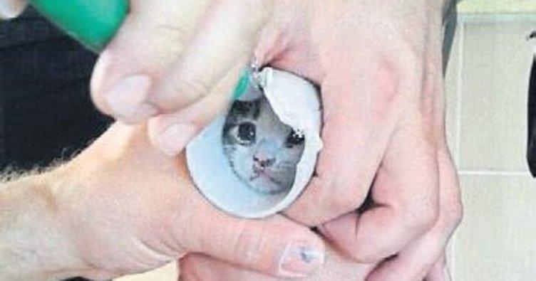 Boruya sıkışan kedi kurtarıldı
