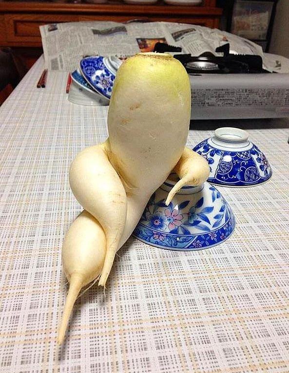 İlginç şekillerde büyüyen sebzeler